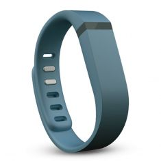 Fitbit Flex Replacement Band Large FB153FB-SLL - Slate-main